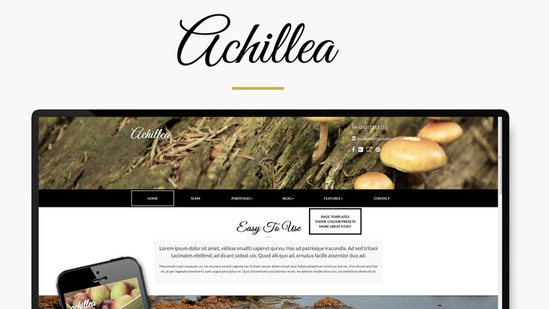 picture of Achillea concrete5 theme